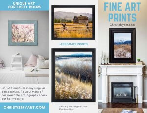 Marketing Framed Landscape Prints by Christie Bryant